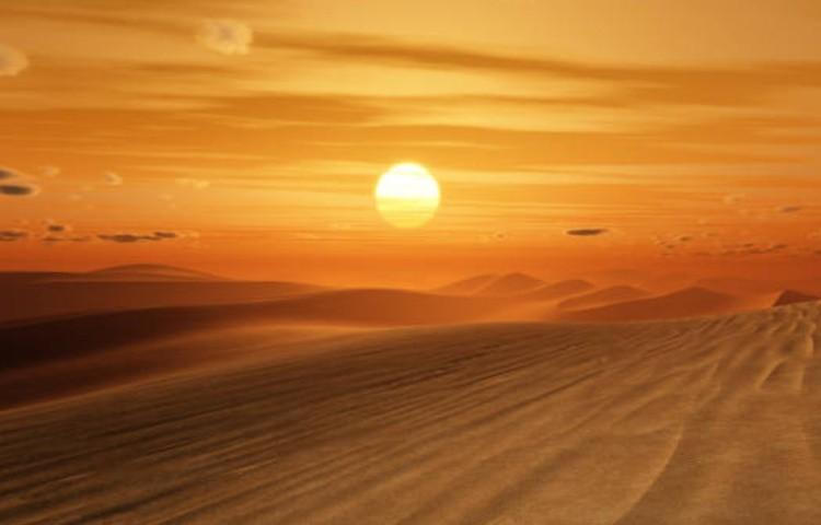 Выживание в пустыне