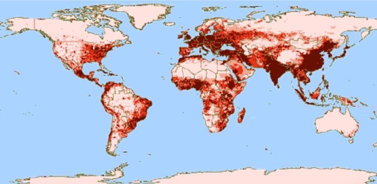 Население земли плотность