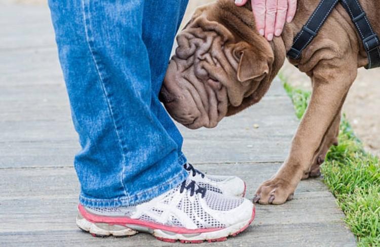 бороться с запахом от ног